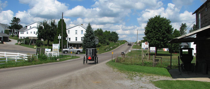 Amish Asked To Clean Up After Their Horses Lancasterpa Com