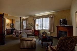 AmishView Inn & Suites - studio suite
