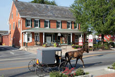 The Old Country Store- Amish Buggy