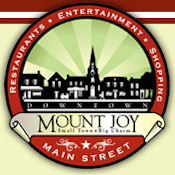 Mount Joy Logo