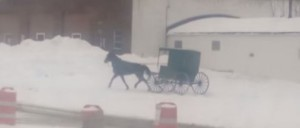 Amish Buggy Doing Donuts in the Snow