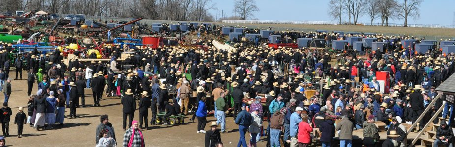 Mud Sale Crowd